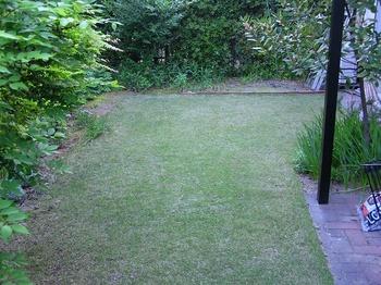 lawn2009.jpg